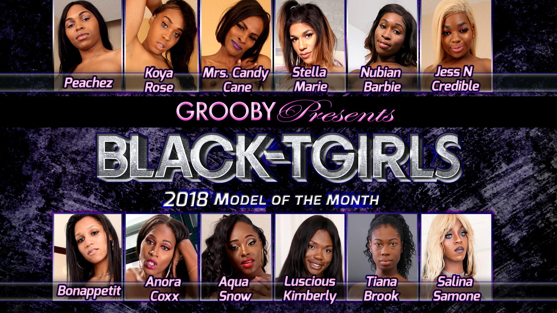 2018 Black Tgirls DVD Trailer