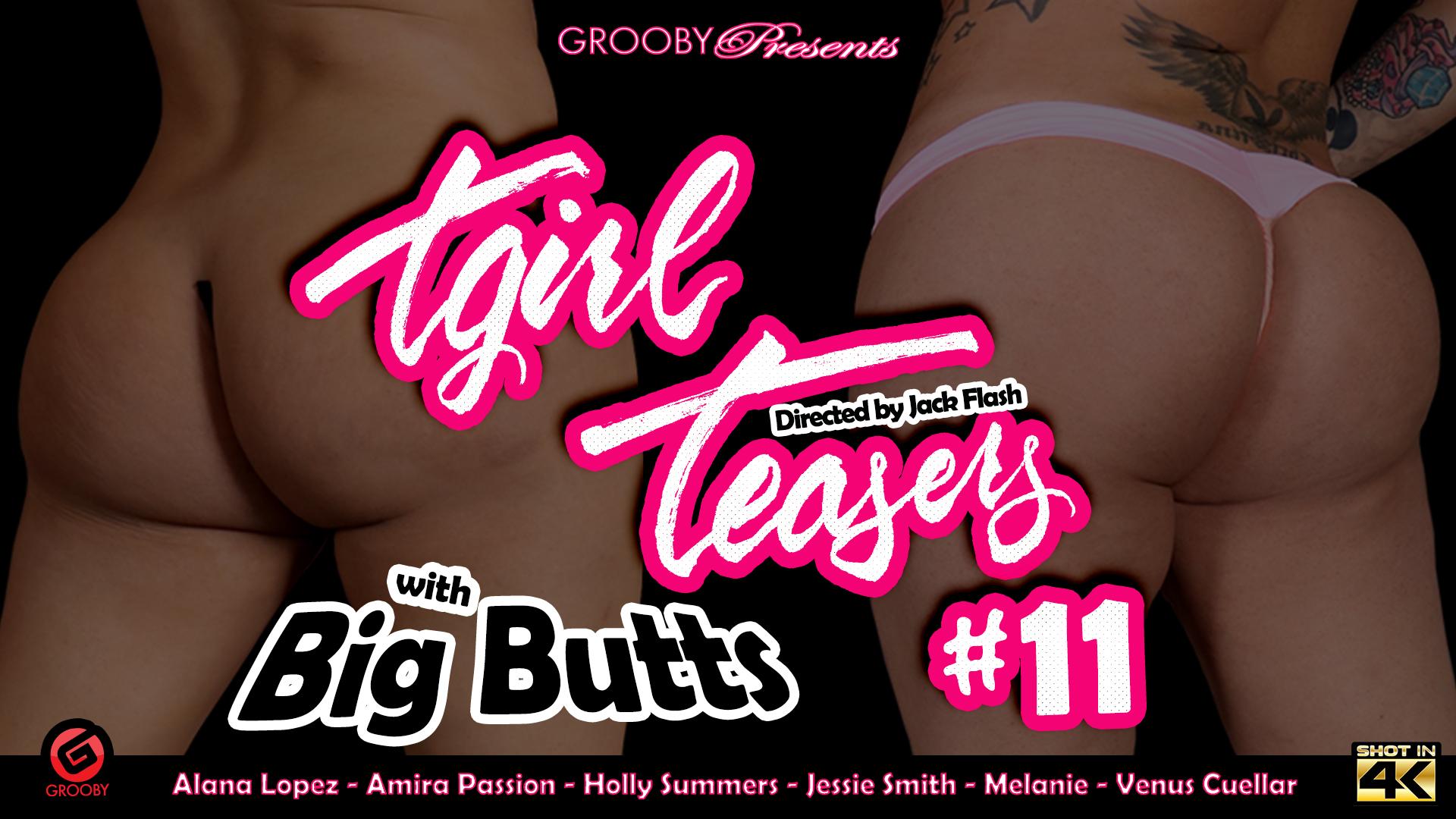 Tgirl Teasers 11 BigButts DVD Trailer