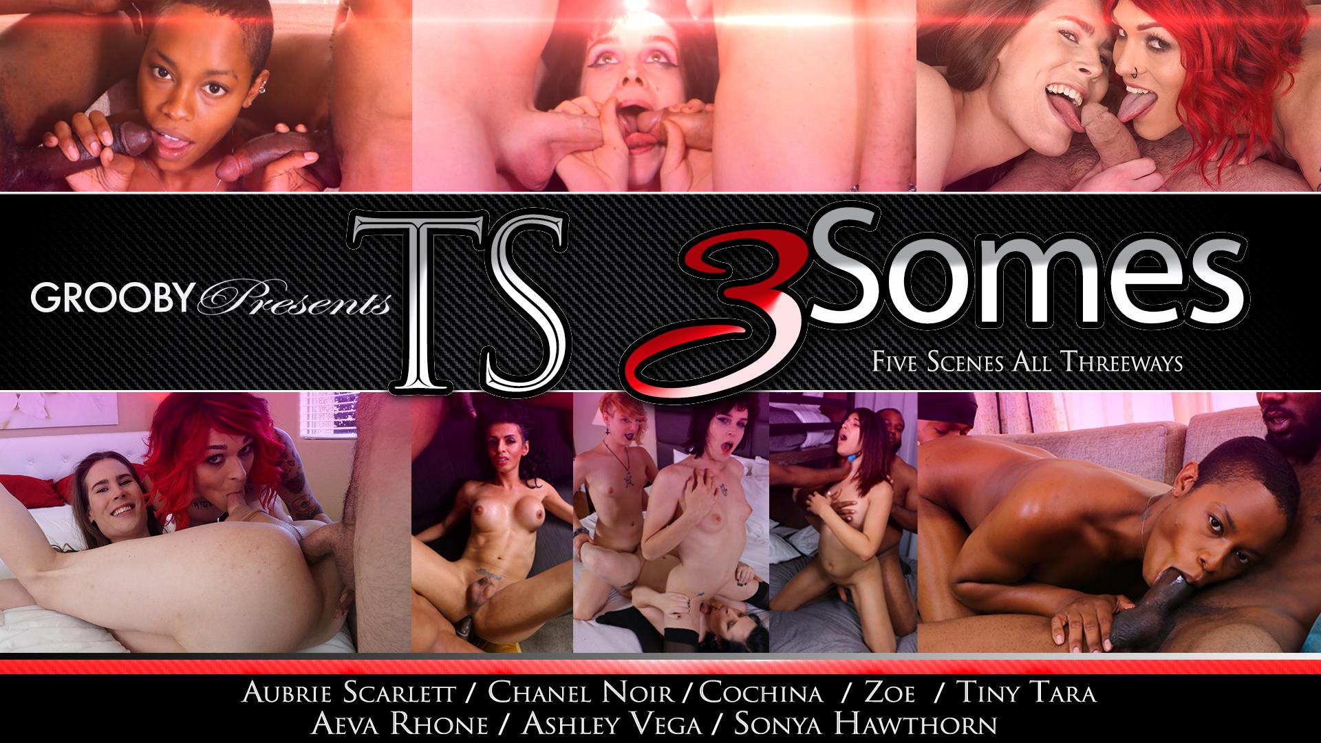 TS 3 Somes DVD Trailer