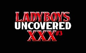 Ladyboys XXX Uncovered # 3 - DVD Trailer