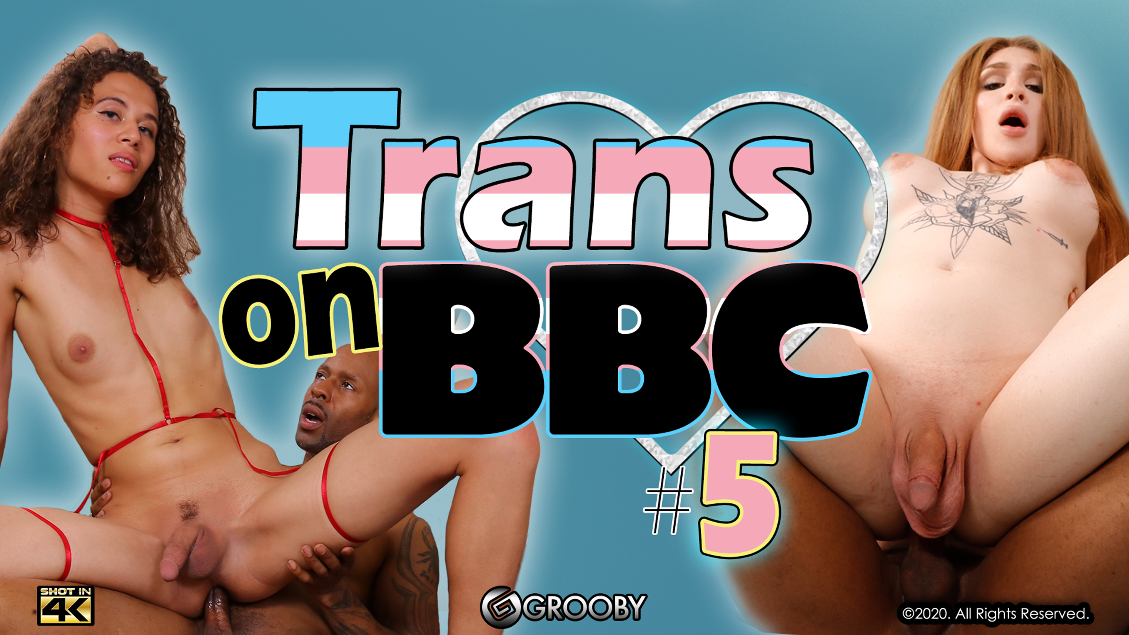 Trans On BBC #5 DVD Trailer